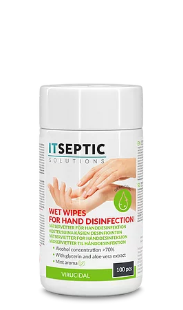 ITSEPTIC Hand Disinfection Wipes (100 pcs, 9x13.5 cm)