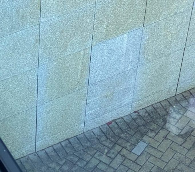 Biosativa Wall